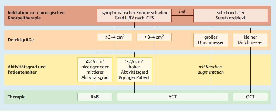Knorpeltherapie Grafik